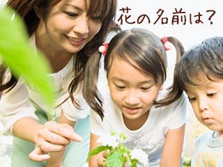 子供と一緒に花を観察する母親