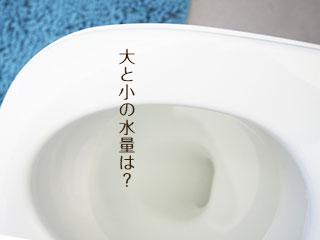 水洗トイレの便器に流れる水