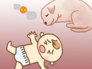 犬の傍に眠る赤ちゃん