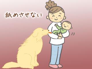 赤ちゃんを舐めようとする犬