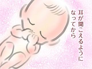耳で聞く胎児