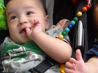 乳母車に座る赤ちゃん