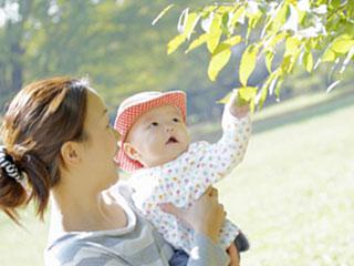 母親に抱かれて木の葉に手を伸ばす赤ちゃん