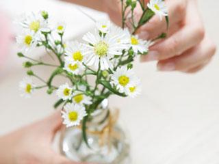 花瓶に花を挿す女性の手