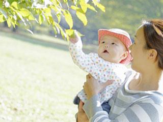 母親に抱かれた赤ちゃんが木の葉を触る