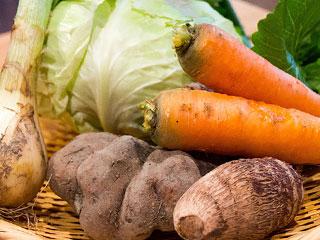 ざるに盛られた根菜類