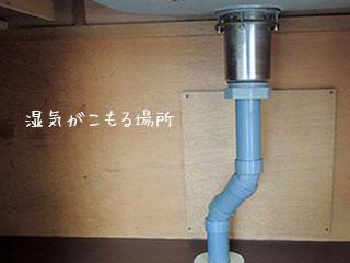 台所排水パイプ