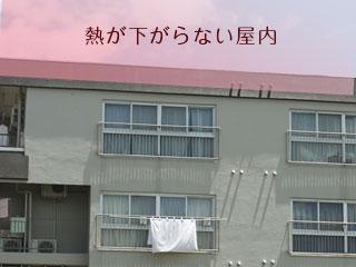 屋上が熱いアパート