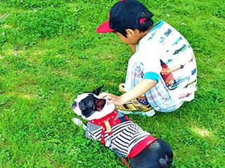 ペットの犬と散歩する子供
