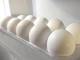 冷蔵庫に並ぶに卵