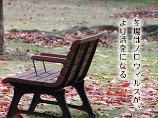 木枯らしの公園ベンチ