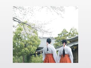 寒川神社と巫女
