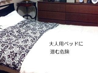 寝室のダブルベッド