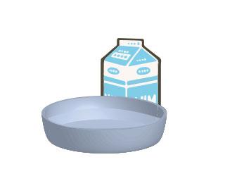 牛乳パックと水の入った容器