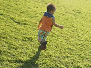 芝生を駆けていく子供
