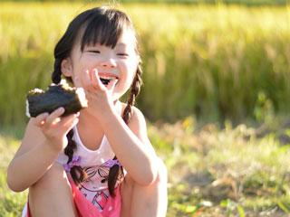 稲の刈り取りを背景におにぎりを食べる子供