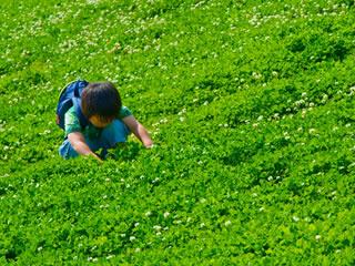 草を見る箸を練習する時期の子供