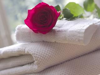 洗濯したばかりのキレイなタオル