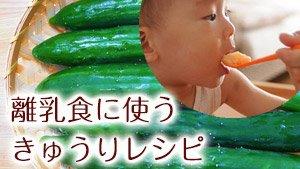 離乳食のきゅうりの栄養&初期/中期/後期/完了期レシピ