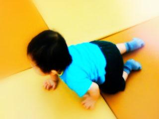 フロアをハイハイする赤ちゃん