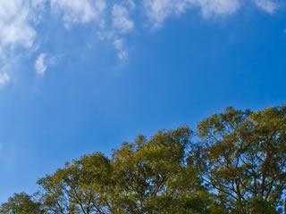 いい風が吹く洗濯日和の晴天