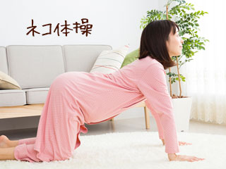 ネコ体操する妊婦