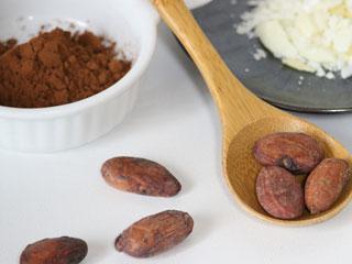 カカオ豆と粉末