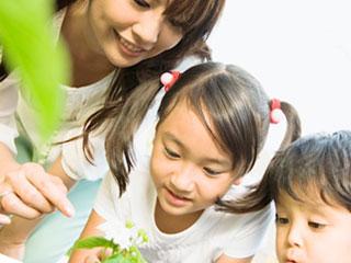 親子で花を観察する