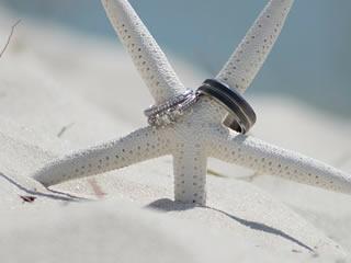 海岸沿いの砂浜に打ち上げられたサンゴと結婚指輪