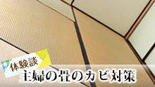 畳に生えるカビの掃除/エタノール・重曹など主婦のテク10