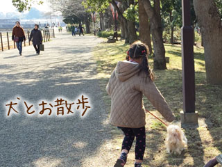 犬を散歩させる女の子