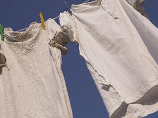 手洗いされたTシャツなどの肌着