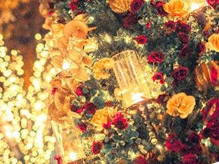 クリスマスに夫婦でイルミネーションデート
