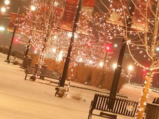 雪の積もった街頭のイルミネーション