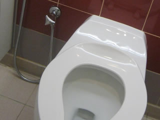 綺麗に手入れされたトイレ
