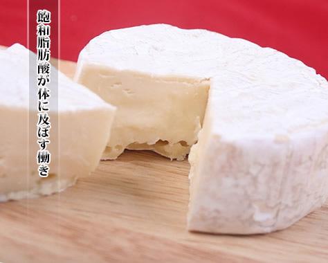 飽和脂肪酸の多い食品・飽和脂肪酸のメリット&デメリット