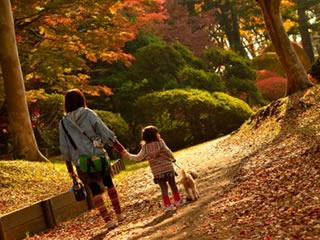 夕暮れ時に散歩する親子と犬