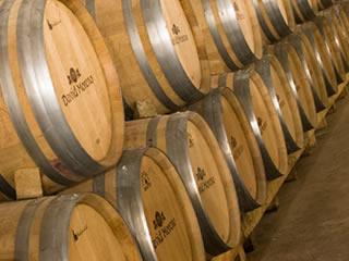 ワインを醸造しているフランスのワイナリー