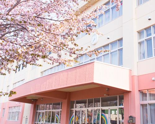 桜が満開の校舎