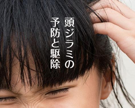 頭ジラミ(アタマジラミ)の原因と症状/卵の駆除と予防法
