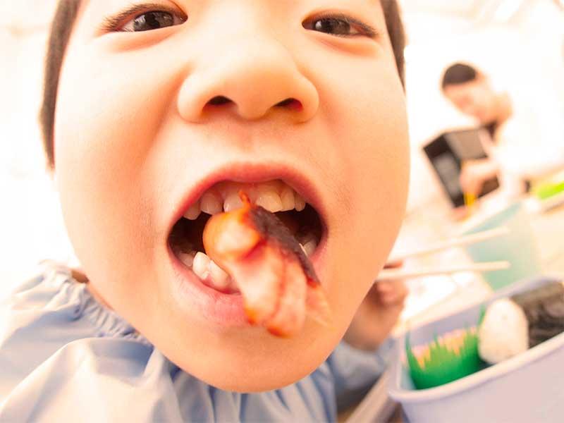 保育園で昼食のお弁当を食べている園児