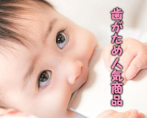 歯がための意味&いつから使う?日本製や人気のおすすめ10