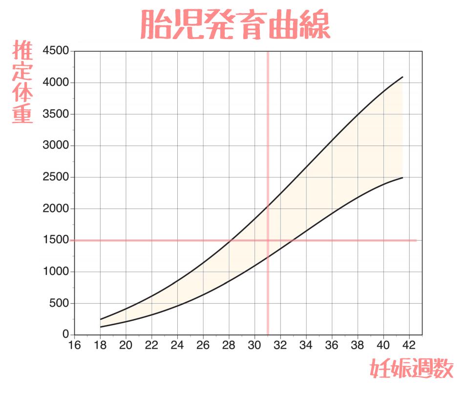 胎児発育曲線