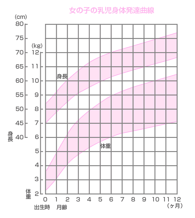 新生児期の女の子の乳児身体発達曲線