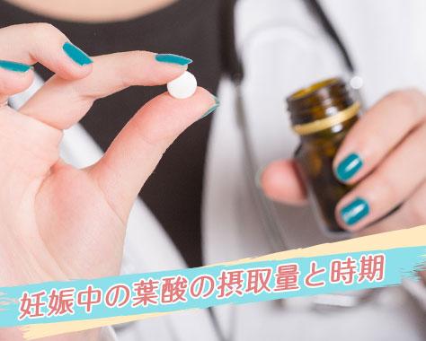 妊娠中の葉酸はいつから?摂取量と時期/多い食品とサプリ