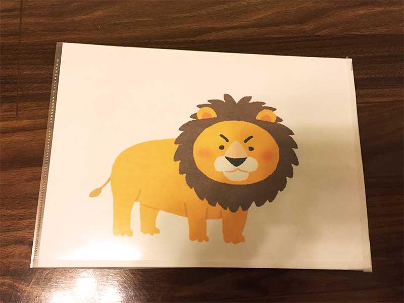 ライオンの手作りフラッシュカード