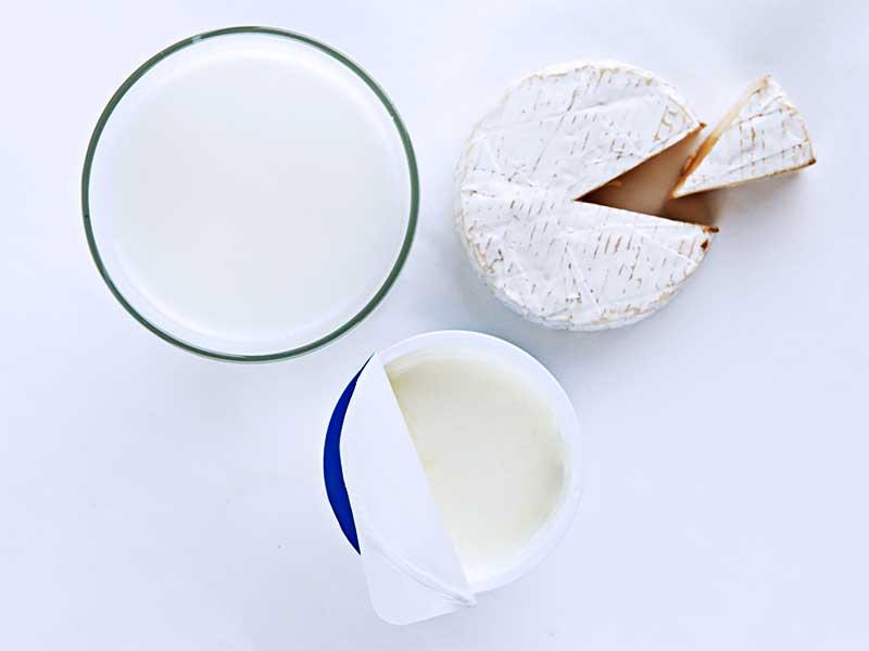 牛乳、チーズ、ヨーグルトなどの乳製品