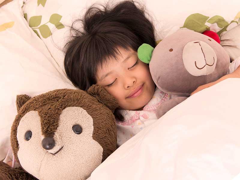 ぬいぐるみに囲まれて寝てる女の子