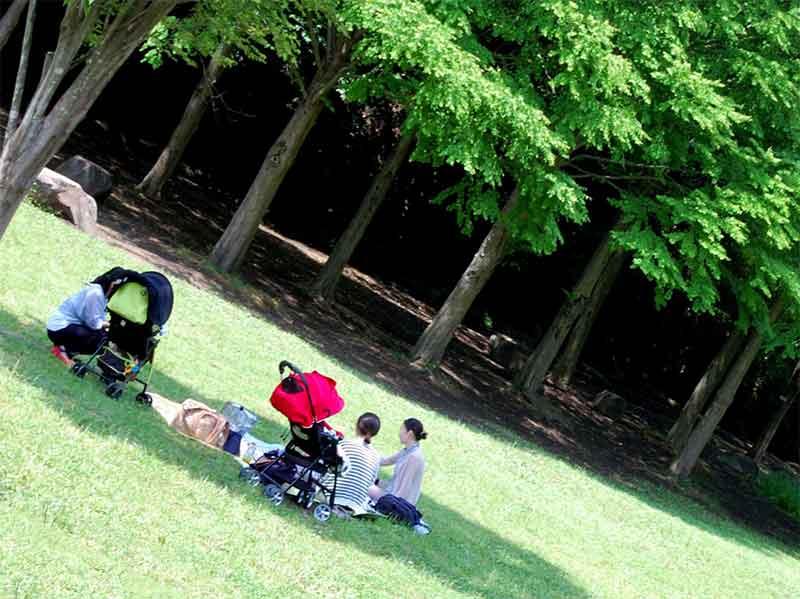 公園の木陰で遊んでる親子たち