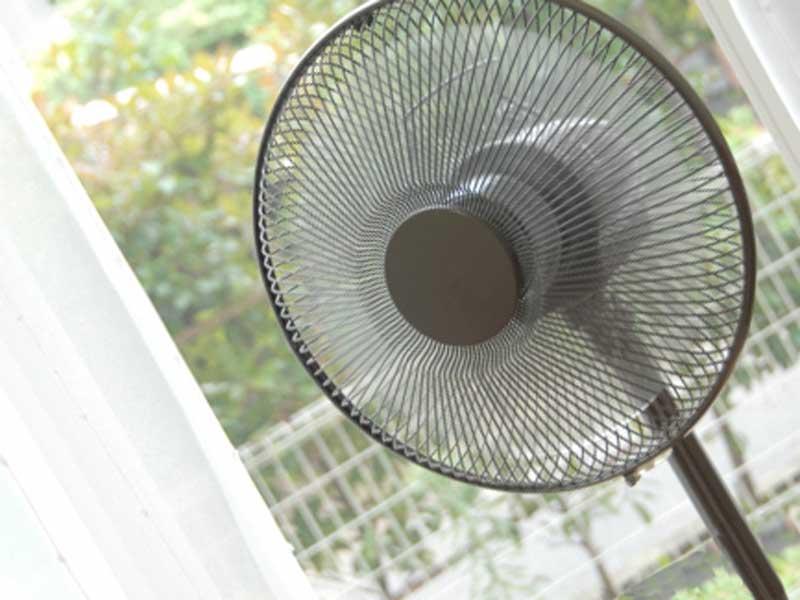 部屋に置いてる扇風機